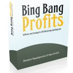 Bing Bang Profits Review