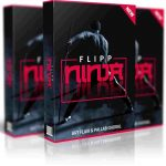 Flipp Ninja Review