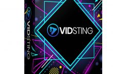 VidSting Review